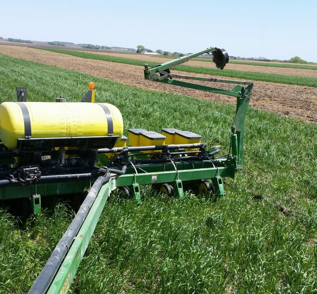 CC Term Ahead of Corn Photo 3