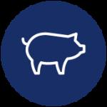 Icon Livestock