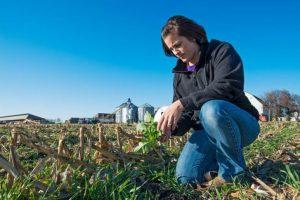 Kellie in cover crops ISA 727x485