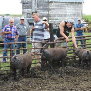 Raasch FD 2015 pigs dale tyler