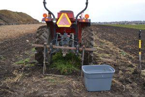 Wunderbar undercutter carrot harvest