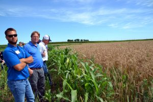 From left to right Matt Hoffman, Scott Nelson of ISA and Don Blair look at VNS rye