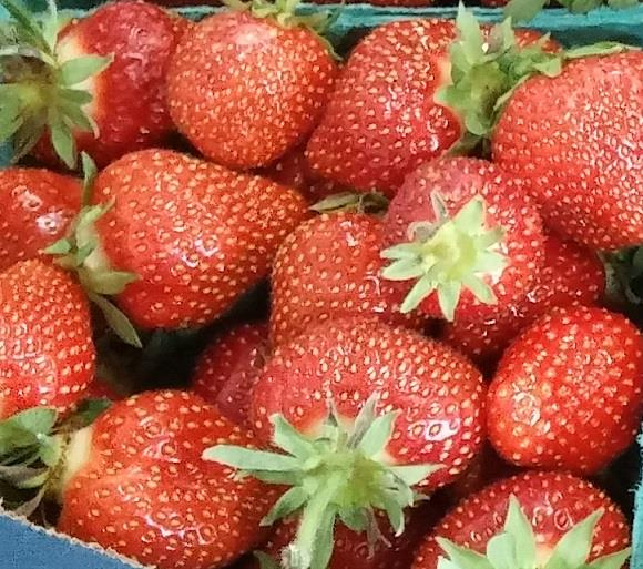 Iowa grown strawberries