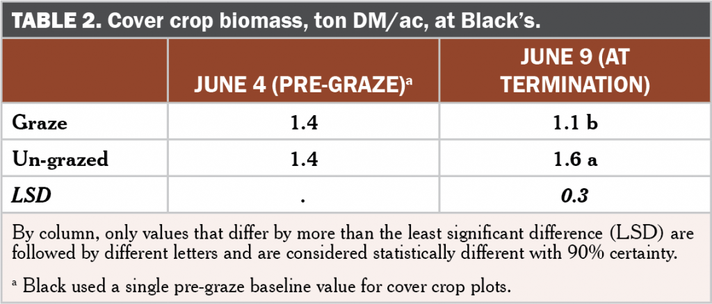 Brassica following grazing table 2