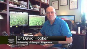 Dr David Hooker