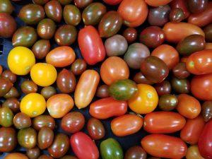 Johnson 2018 07 05 cherry fruits