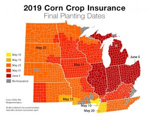 Corn final planting date