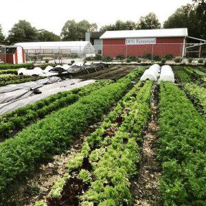 Quiner farm2