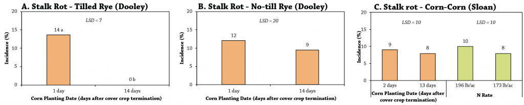 Corn planting date after cover crop termination stalk rot figure