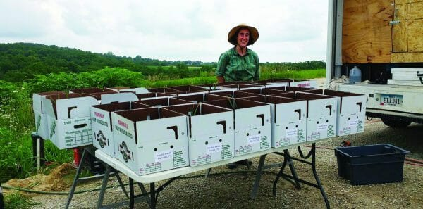 CSA packing at humble hands harvest