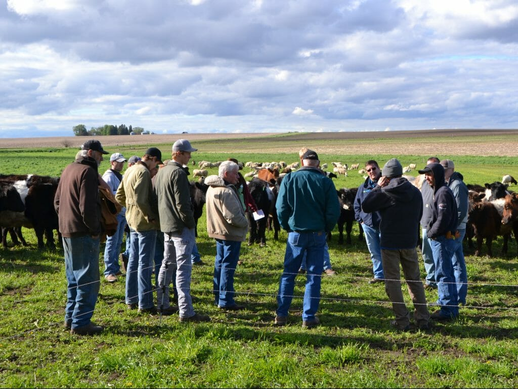 Graziers swap knowledge and stories