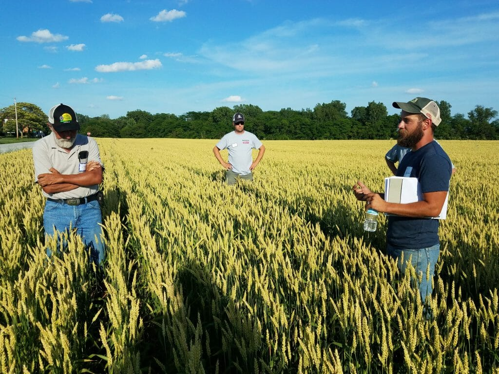 small grain field day