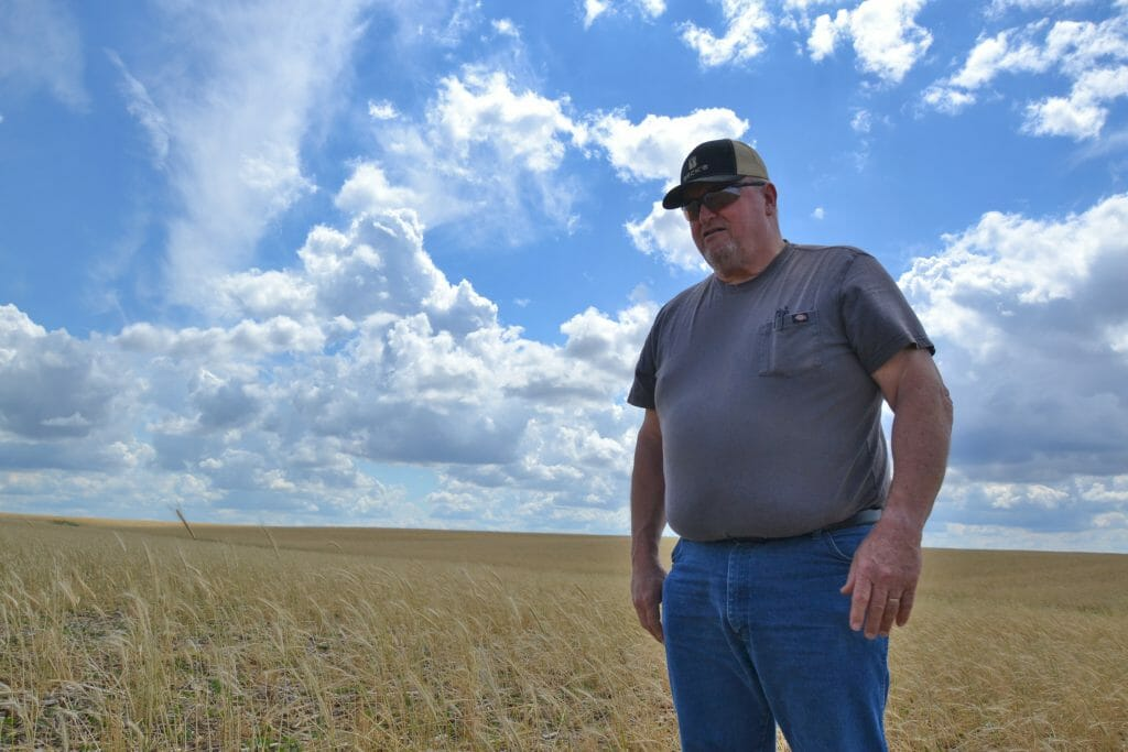 Jack Boyer farmer-led research reduce nitrogen input without reducing yield