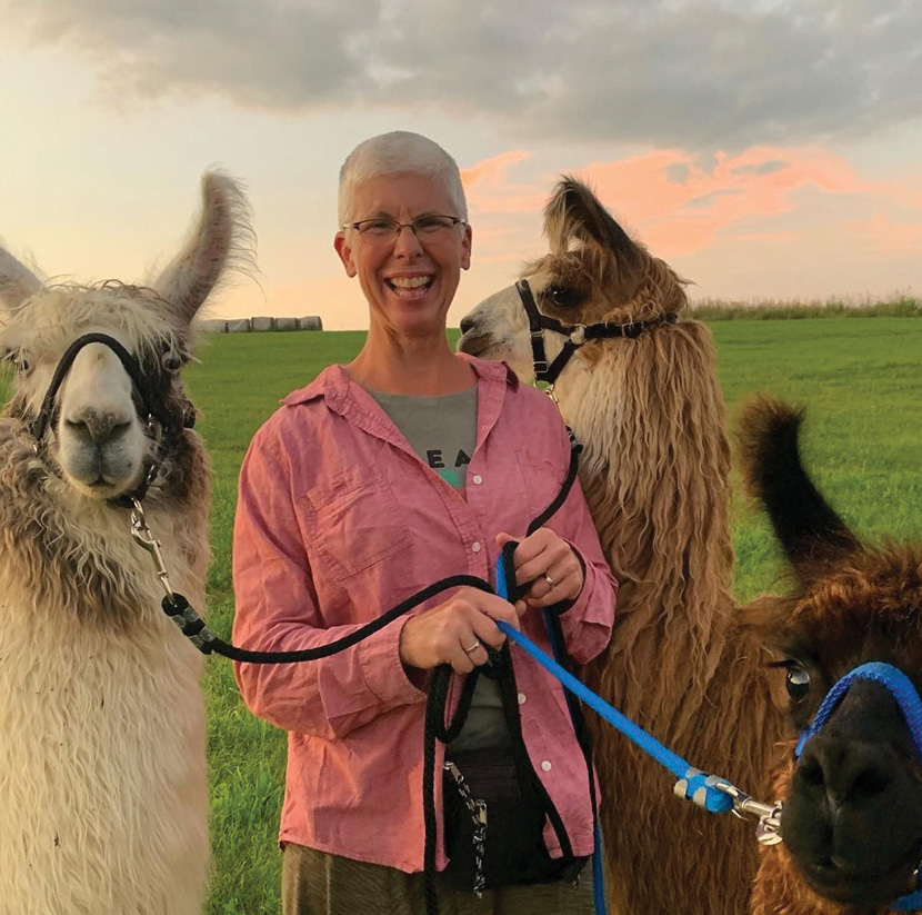 Susan Young and llamas