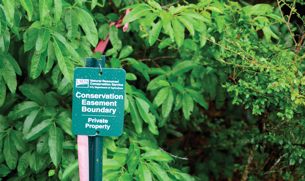 Conservation easement feature