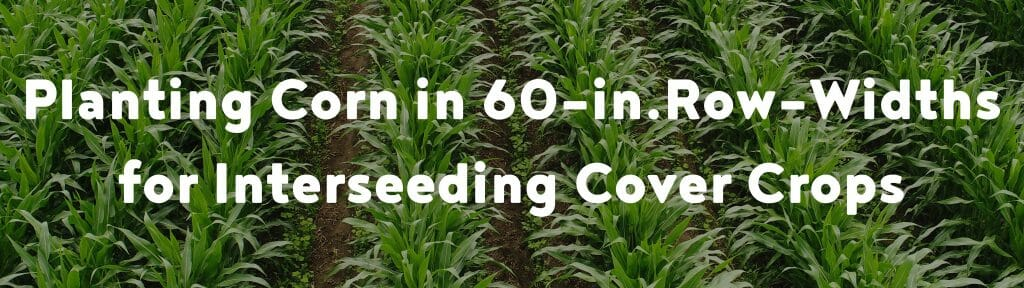 Planting Corn in 60-in. Row-Widths for Interseeding Cover Crops