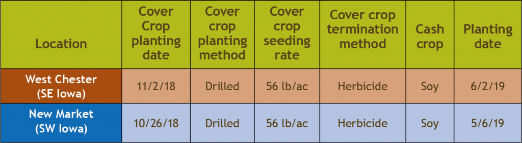 Cover crop management and cash crop