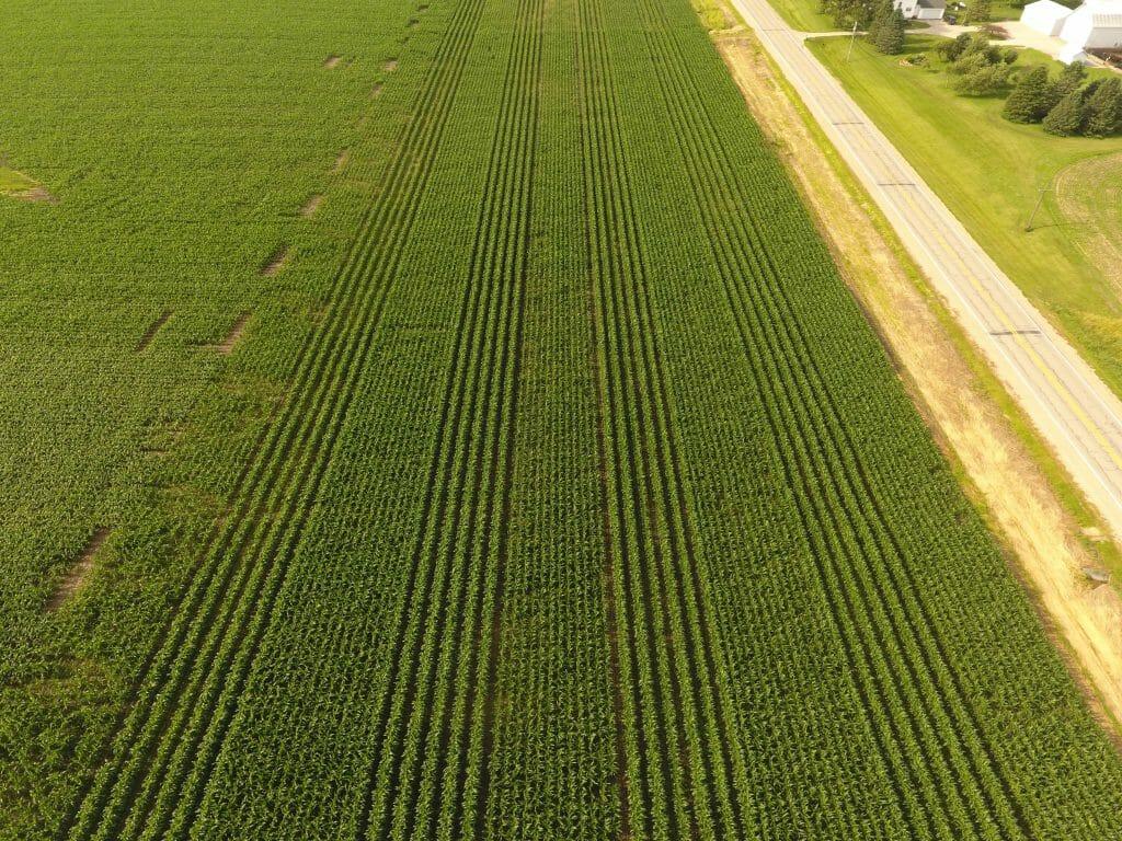 60 inch corn drone