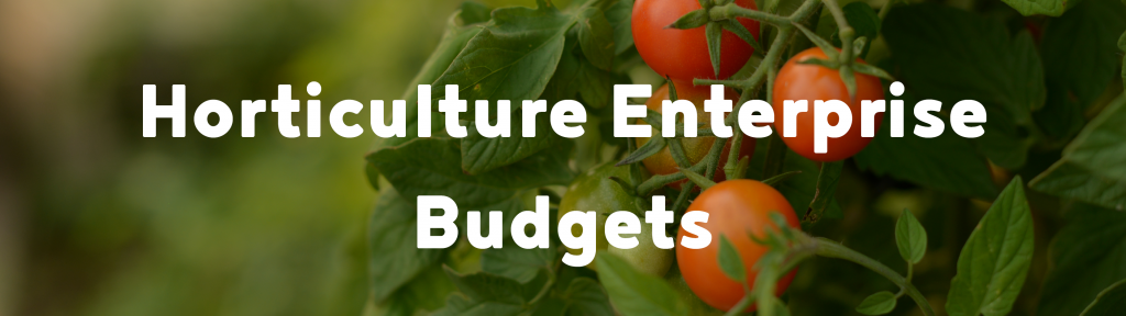 Hort enterprise budgets