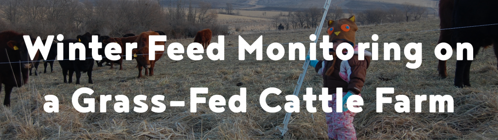 Winter feed monitoring