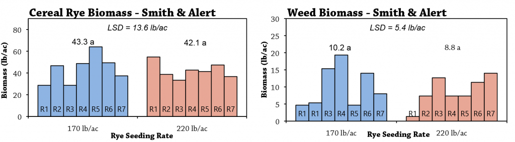 Spring rye organic weed control fig 1