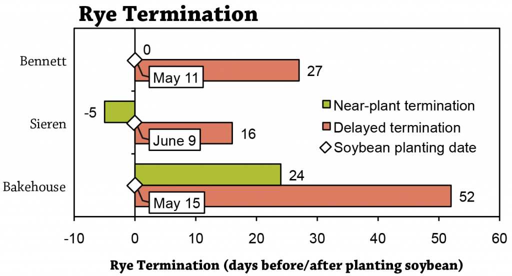 Terminating rye after planting soybeans Figure 1