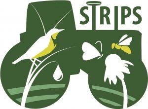 PFI STRIPS logo