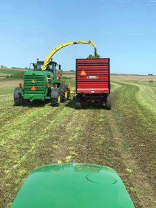 Harvest silage