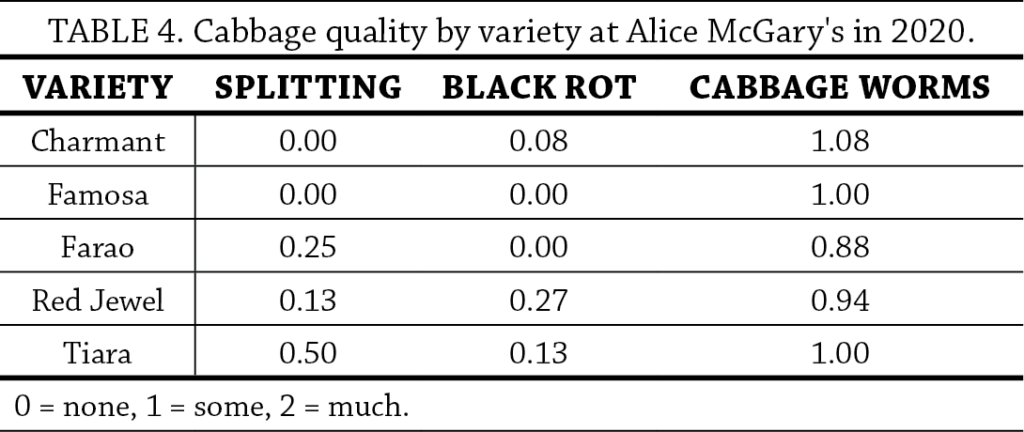 Cabbage Variety Trial Table 4