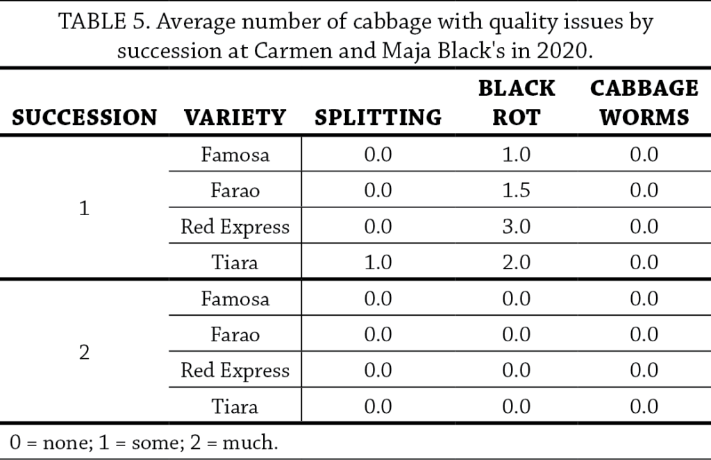 Cabbage Variety Trial Table 5