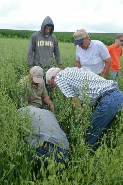 Checking out the forage diversity in David Carbaugh's converted row crops.