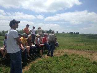 Attendees observe the cows grazing
