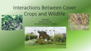 Effect of Diverse Cover Crops