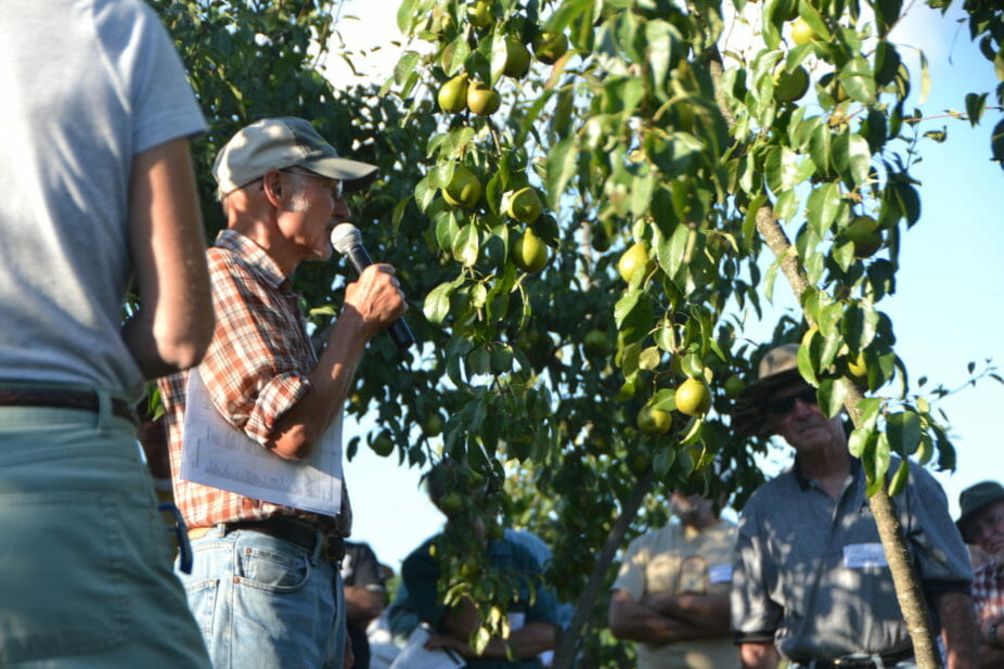 David tells attendees about one of his favorite pear cultivars, Gourmet.