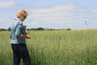 ISU researcher and PFI farmer Margaret Smith shows her oat field to attendees at a field day in 2015.