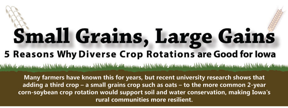 small grains large gains