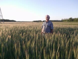 Tom Frantzen in his hybrid rye