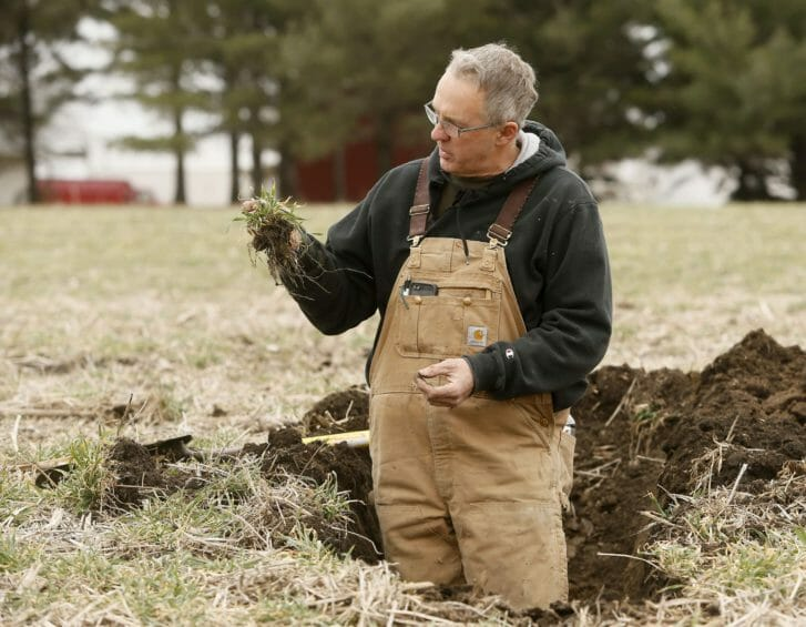 A middle aged man in coveralls stands in a hole dug into a mostly brown field, holding a plant in his hand that has long roots clinging to soil